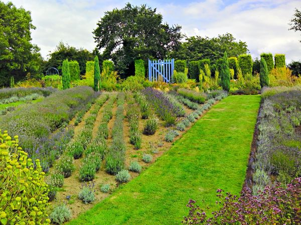 lav_garden