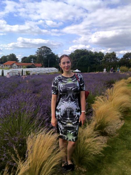lavender_me_maze