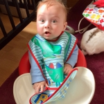 Baby Led Weaning: First Steps Onto Solids