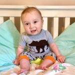 Blade & Rose: Summer Bear Outfit & Dribble Bibs